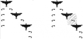 Figure 23: (23a): the vortices formed in a V formation (from [38]); and (23b) position of the virtual rectangle of positive space between two birds.